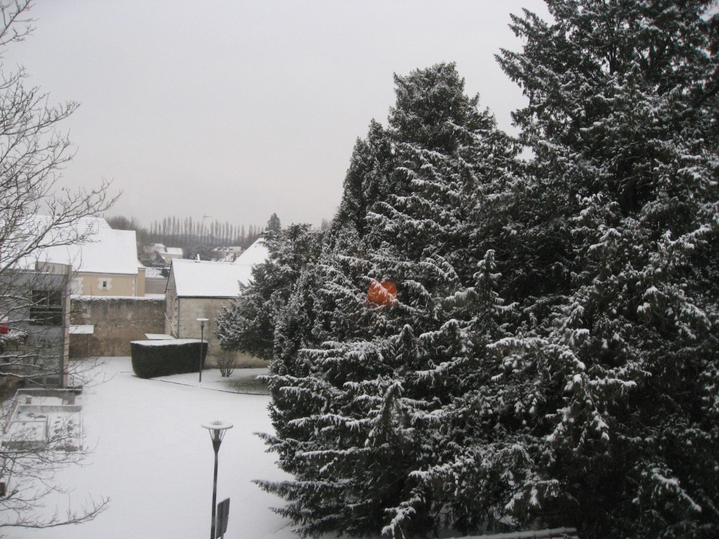 janvier 2009 003