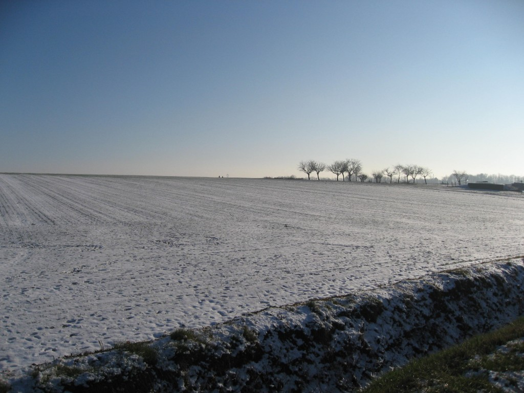 janvier 2009 022